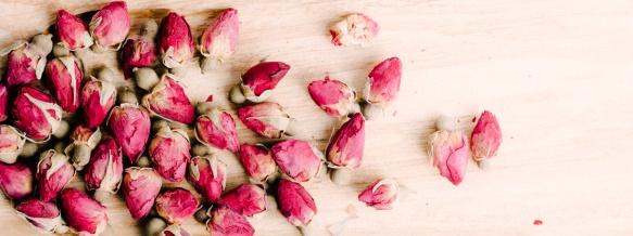 03-Rosas-02-03-2016