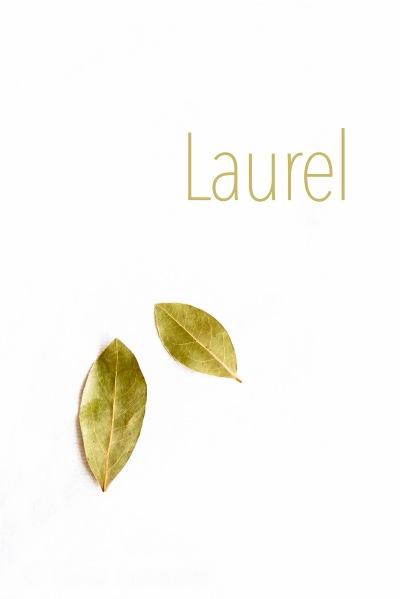 05-Laurel-01-07-2016